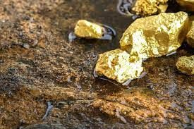Business for Sale > Two exploration licences in gold-bearing areas