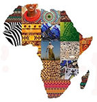 AU launches .africa domain name which is set to be a 'disruptor'